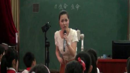 2013年马尾区语文阅读课比赛一等奖生命生命连丽芳执教