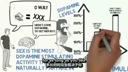 【国外戒色视频】科学告诉你为什么戒色!