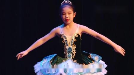 玛丽柏莎芭蕾学员演出《睡美人》选段