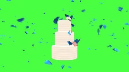 [shijueju.com]绿屏抠像生日蛋糕视频素材
