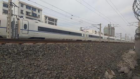 醉美胶济G194青岛-北京南