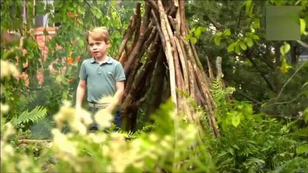 萌!威廉凯特带三个娃花园玩耍,皇室公开威廉王子全家福