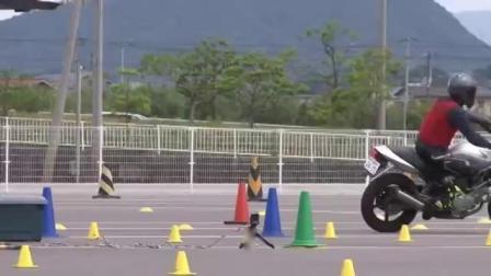 【石碳纪|金卡纳】石头哥川崎忍者1000 MSGC金卡纳练习(4分23秒,险避高摔)