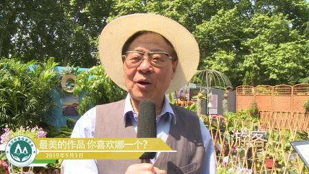 2019武汉家庭园艺展引起武汉市民广泛关注