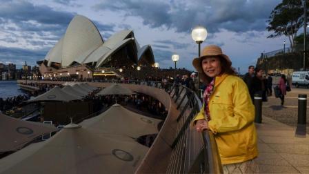 5月11日夜游悉尼