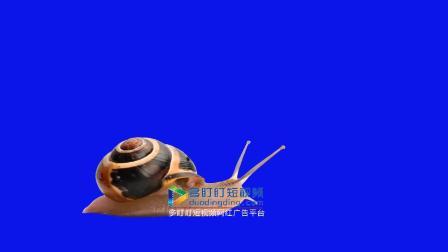 蜗牛绿屏抠像素材 特效素材