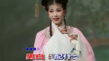 荆钗记花园会二纯伴奏听说来了王先生3
