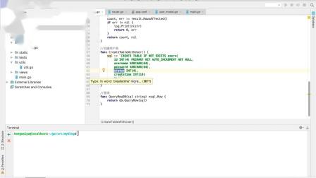 千锋Go语言开发Beego教程:5. 项目搭建以及注册用户信息功能