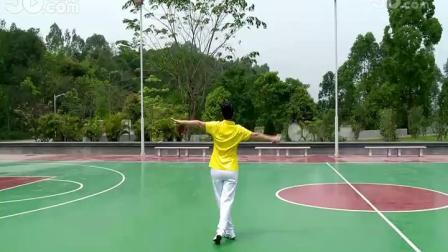 6、柔力球第九套教学 第3节:前后缠绕