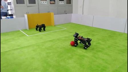 优宝特比赛教学型机器狗Billy足球射门