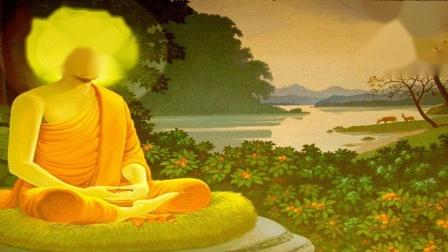 1037福报有多少全凭自己修 佛教教育短片 欢迎转发 功德无量(深信因果 常念弥陀 觉悟人生 阿弥陀佛)阿弥陀佛