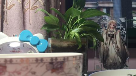 |苏暖|端午特别视频~制作笹饼吖 它不戴绿帽而穿绿衣
