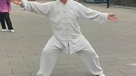 2019麻老师新编陈氏传统拳竞赛套路