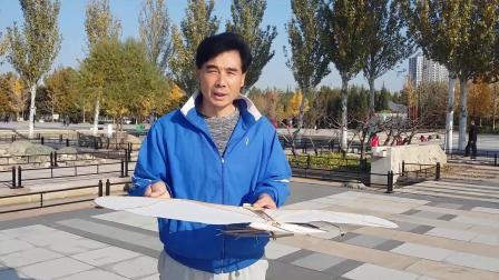 张金彪老师花样盘鹰教学合集