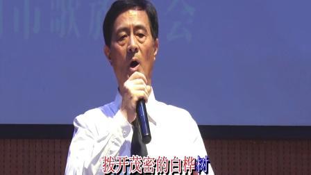 7-河南省声歌协会《演唱会》王赤伟歌曲两首 2019.6.12.