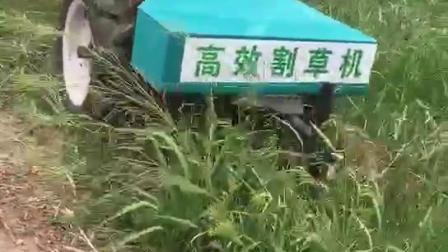 自走式割草机各种杂草都能除