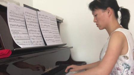 王力—个人演奏—莫扎特C大调第一乐章K545