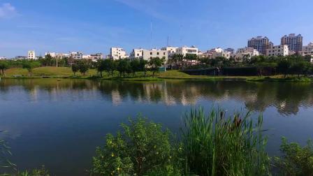 今天的美舍河  我们一起看风景