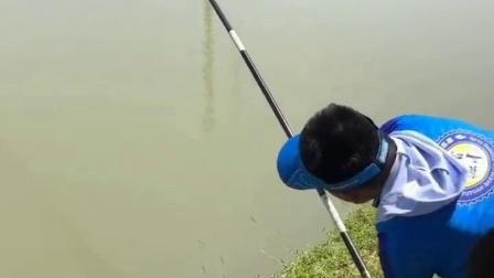 发酵鱼饵的制作方法 红虫钓鱼打窝 钓青鱼挂颗粒饲料技巧