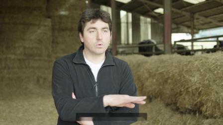 VMS V300 法国牧场故事之一