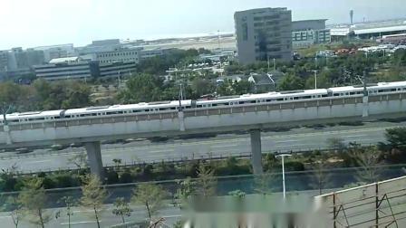 深圳轻轨2
