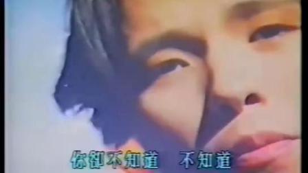 潘美辰-不懂爱的人-国语高清