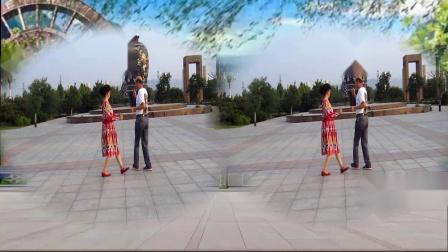 慧珍广场舞双人对跳一起走天涯2