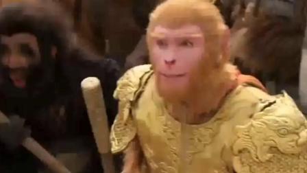 牛魔大战美猴王