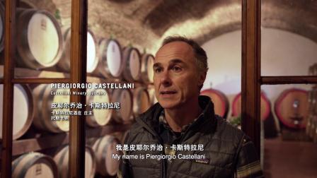 麦德龙2019年度精选葡萄酒-托斯卡纳桑娇维塞红葡萄酒
