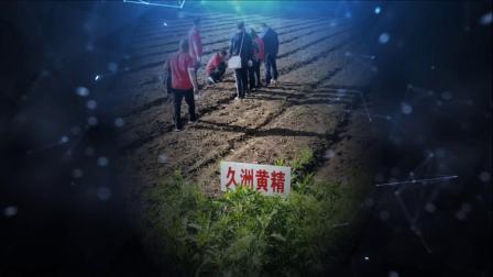 久洲集团物粹堂领导核心绿色之旅