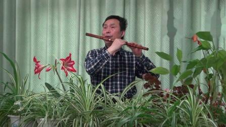 逛新城-笛子独奏-琴台乐坊