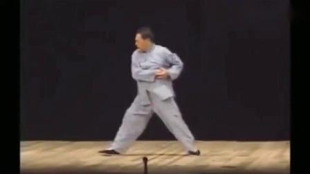 陳式心意混元太極大師馮志強留世的二十四炮演練視頻己成絕響