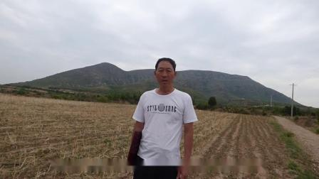 王天河:龙母抱卵风水宝地,寻龙点穴风水大师阴宅地理墓地风水