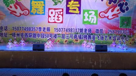 梧州市舞音飞扬艺术培训中心2019舞蹈学习汇报演出