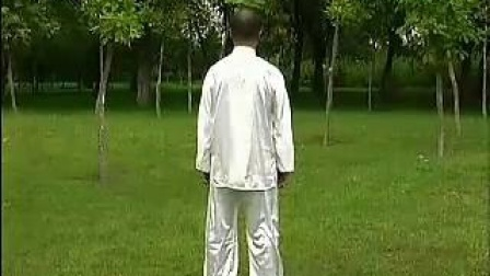 张吉平:混元太极拳24式背面教学口令_土豆视频