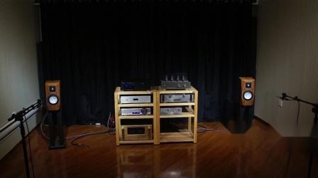 火狼电声 accuton 085 012 5寸2分频后倒相发烧书架音箱
