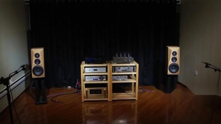 火狼电声 vifa ne225 绅士宝 8731 r6620 8寸3分频后倒相发烧音箱