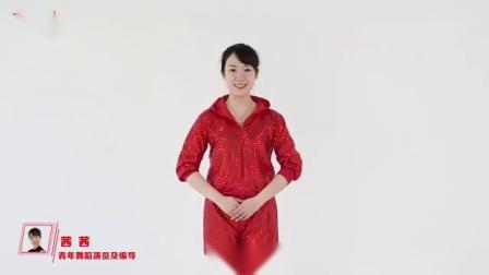 名师教你跳-健身广场舞《中国范儿》茜茜老师_标清