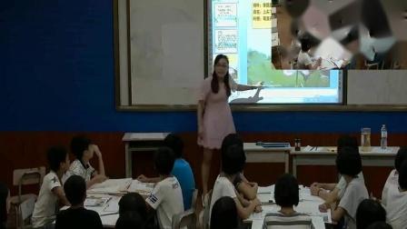 人教版八年级美术上册第三单元 笔墨丹青第2课 借物寓意-秦老师优质课视频(配课件课件)