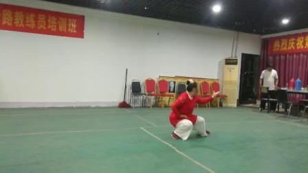 刘忠云老师演练子母棉掌