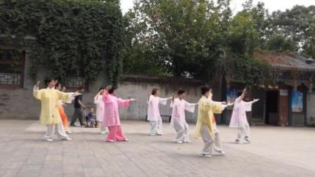 石太公园太极队在水上公园演练二十四式太极拳