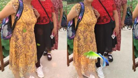 宁村心心相印舞蹈队姐妹一起潇洒牛盆峪2019年7月5日。