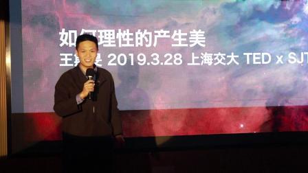 如何理性的产生美:王斯旻@TEDxSJTU