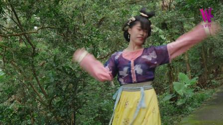 成人零基础古典舞培训 糖糖古典舞《琵琶行》