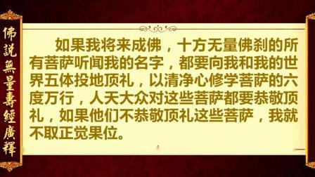 《佛说无量寿经广释》12