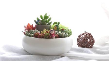 爱优尚多肉植物虹之玉黄丽姬胧月白牡丹室内绿植到家多肉组合盆栽
