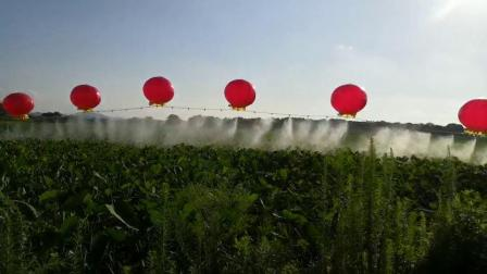 氢气球打药机视频1
