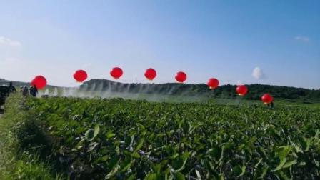氢气球机打药视频2