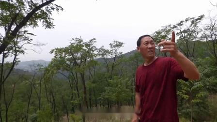 王天河:风水宝地龙虾地下集,寻龙点穴阴宅地理墓地风水视频系列