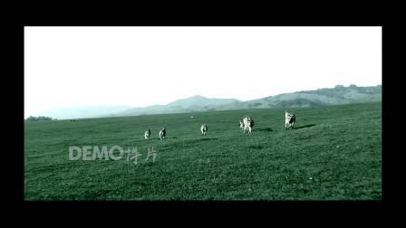 c610 壮美大自然草原森林蓝天白云云海海浪海洋实拍视频素材